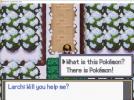 Pokemon Golden Mountain 26.01.2021 08_33_37.png